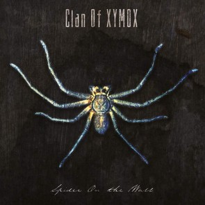 SPIDER ON THE WALL CD