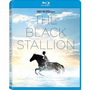 Η ΜΑΥΡΗ ΚΑΛΛΟΝΗ / THE BLACK STALLIION
