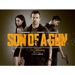 Ο ΝΟΜΟΣ ΤΗΣ ΣΙΩΠΗΣ DVD/SON OF A GUN DVD