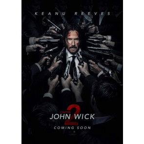 JOHN WICK: ΚΕΦΑΛΑΙΟ 2 DVD/JOHN WICK: CHAPTER 2 DVD