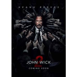 JOHN WICK: ΚΕΦΑΛΑΙΟ 2 DVD/JOHN WICK: CHAPTER 2 DVD