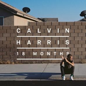18 MONTHS LP