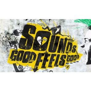 SOUNDS GOOD FEELS GOOD CD