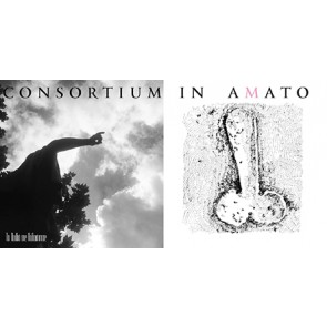 CONSORTIUM IN AMATO CD