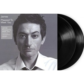 PLEASED TO MEET YOU 2LP