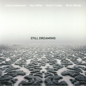 STILL DREAMING (FEAT. RON MILES, SCOTT COLLEY & BRIAN BLADE) CD
