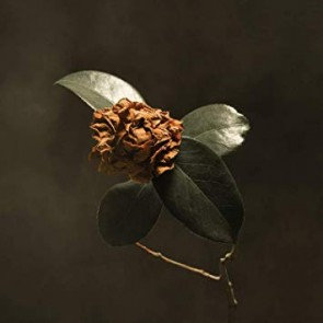 YOUNG SICK CAMELLIA (CD)
