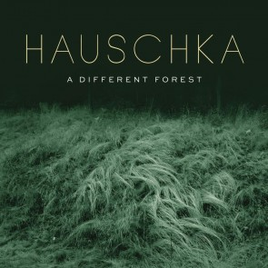 A DIFFERENT FOREST (CD)