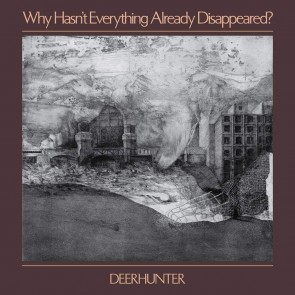 WHY HASN'T EVERYTHING ALREADY DISAPPEARED? (GREY LP)