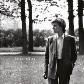 BRILLIANT TREES LP