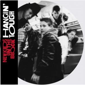 Hangin' Tough LP Picture Disc